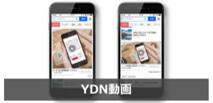 YDN動画広告